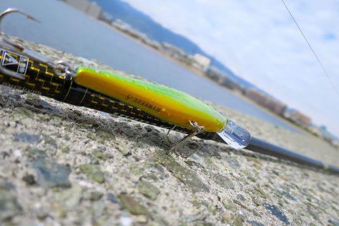 釣りを趣味として楽しみ続ける為に