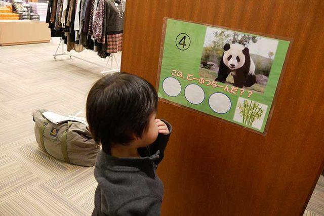 パンダの写真を発見!!