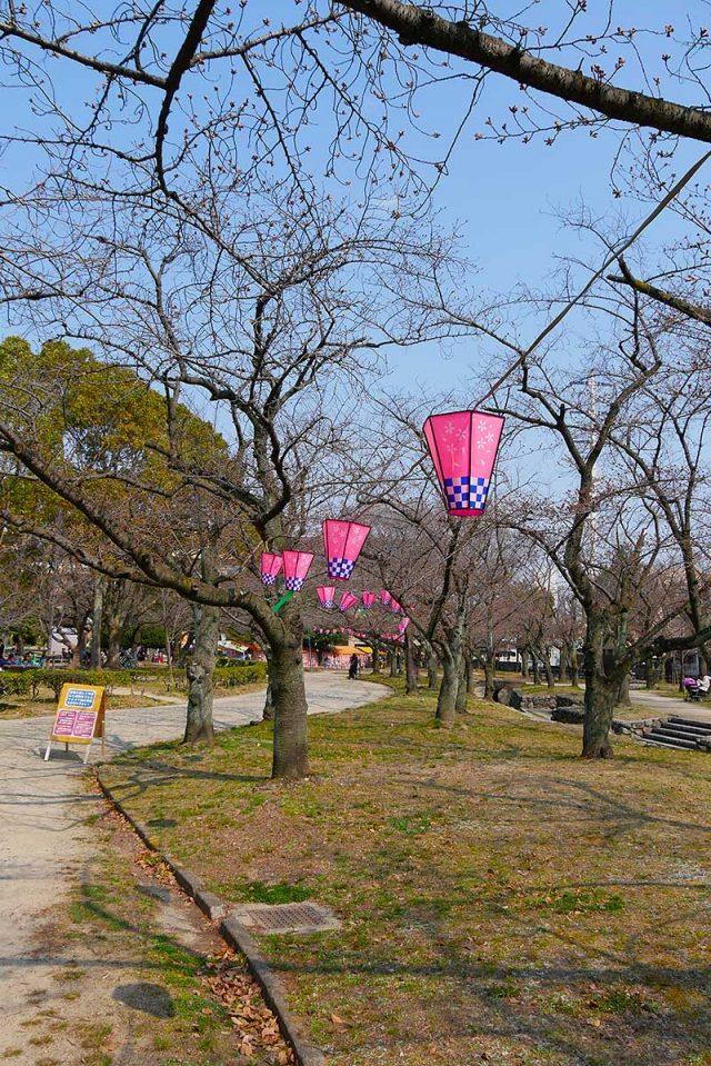 桜の季節になると屋台も出ます