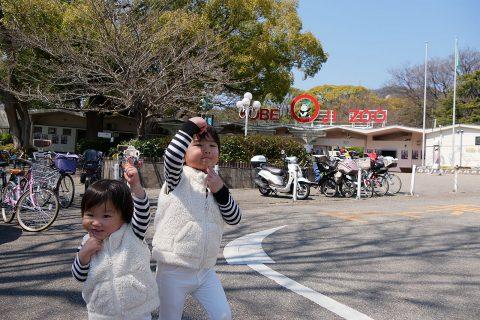 神戸の王子動物園は子供にオススメ!動物と遊園地をレビュー!!