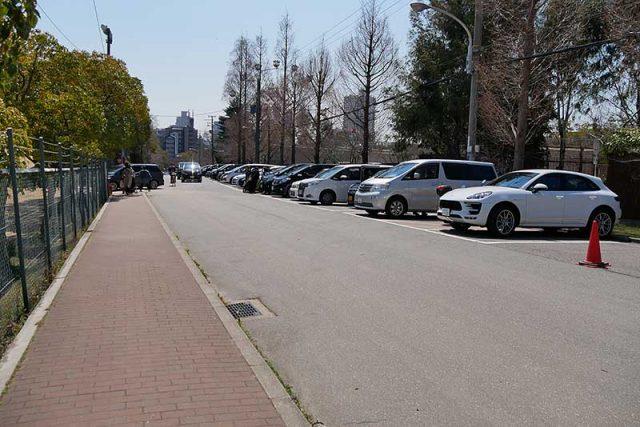 王子動物園の駐車場へ到着!!