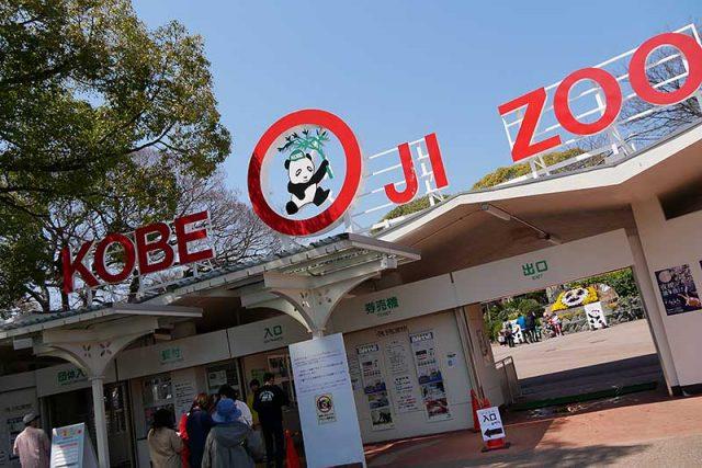 王子動物園の入場口へ!!