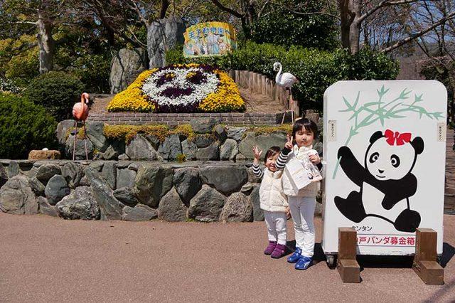王子動物園に来ました!!