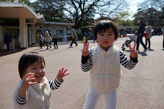 王子動物園を満喫しました!!