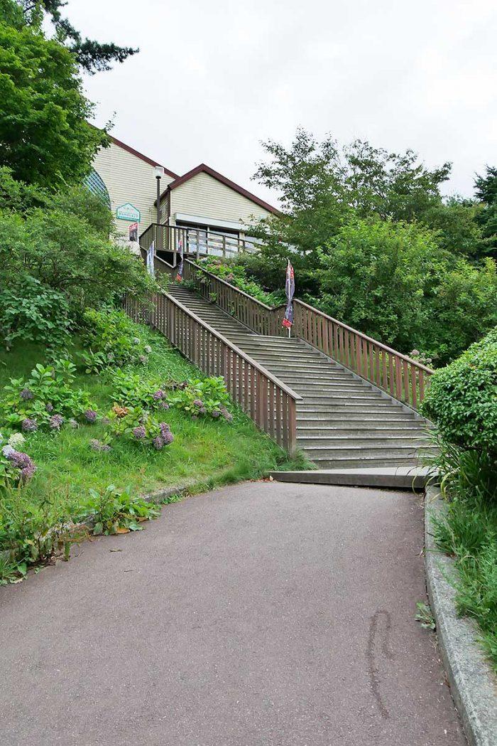 楽しかった六甲山の夏のイベント!!