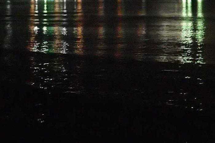 サヨリの波紋