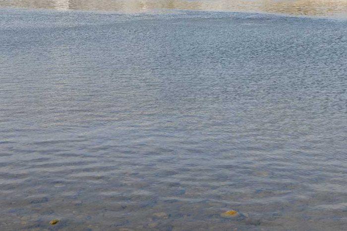 近所の水辺