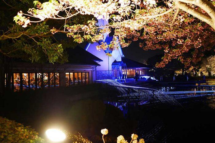 教会の光が綺麗!!
