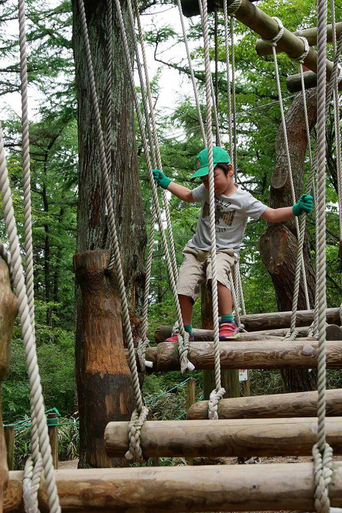 吊橋の上を移り渡る