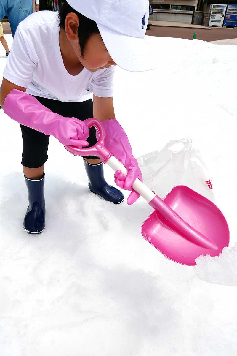 雪を掘って宝物を探します