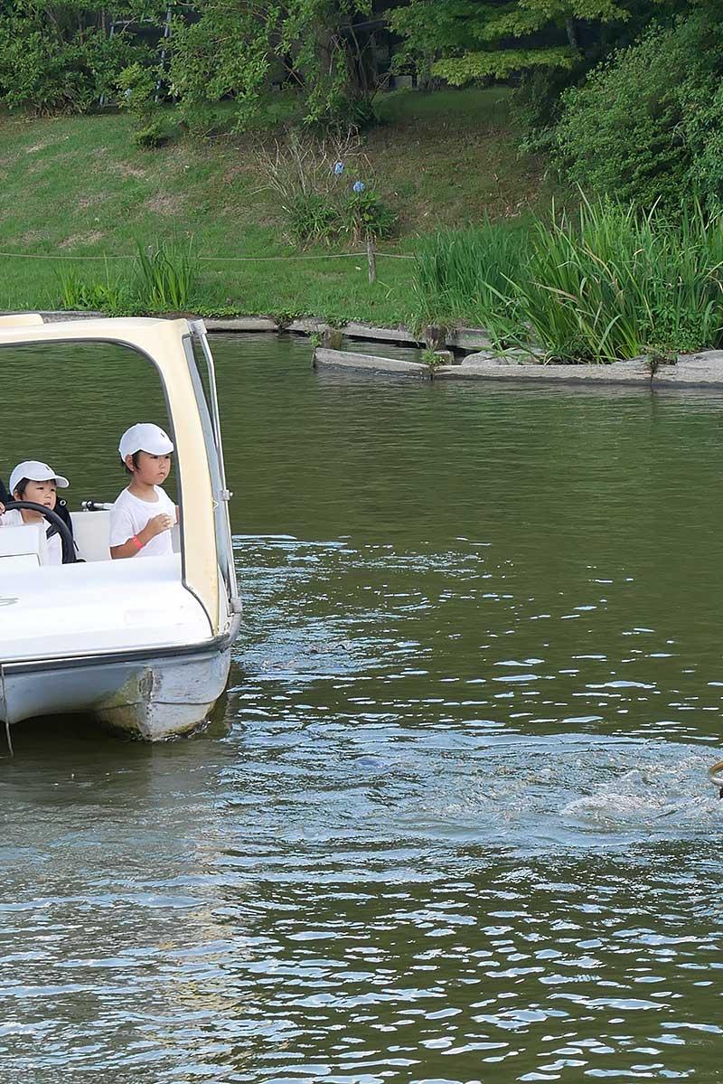 ボートから鯉のエサやり