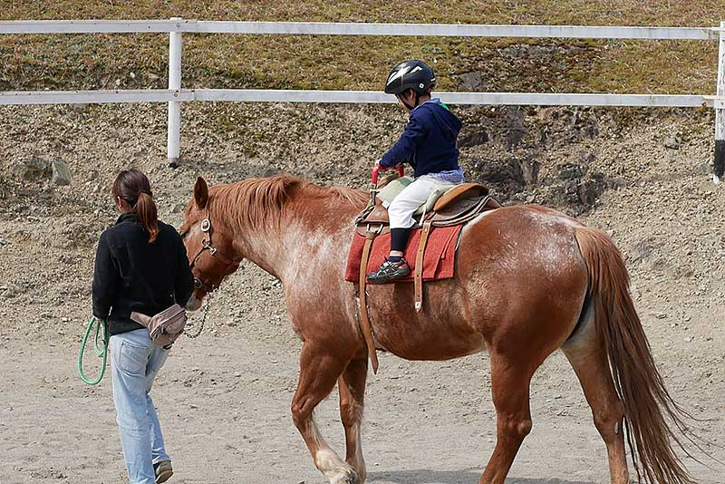 乗馬体験!!