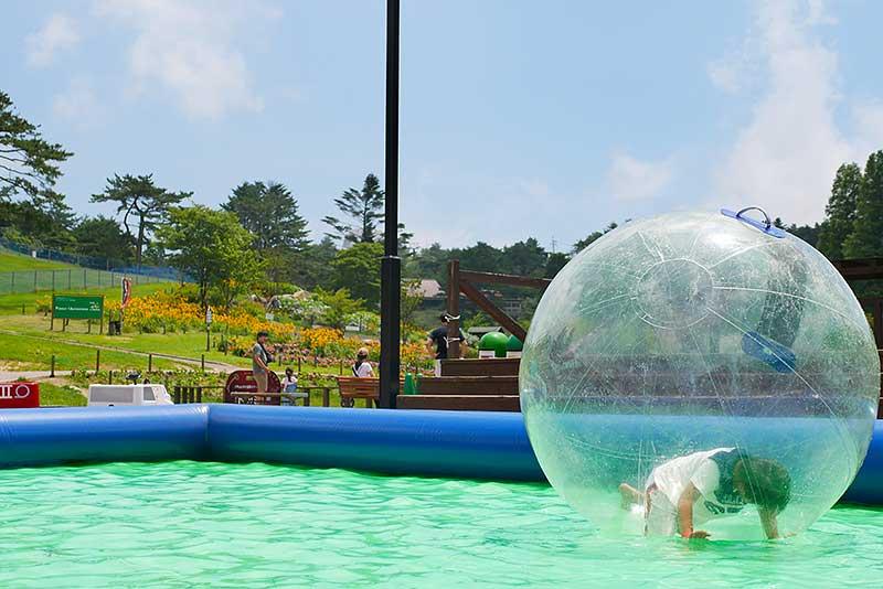 バブルボールは暑そう