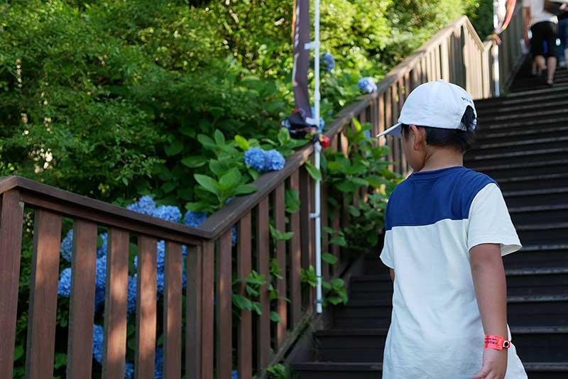 六甲山カンツリーハウスの階段