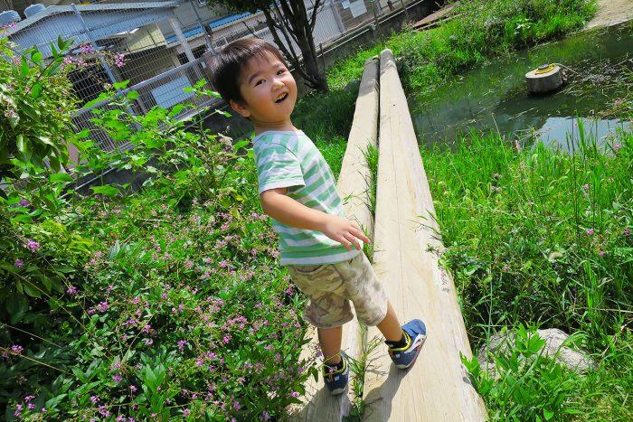【西宮】街中なのに自然で遊べる『みやっこキッズパーク』を紹介!