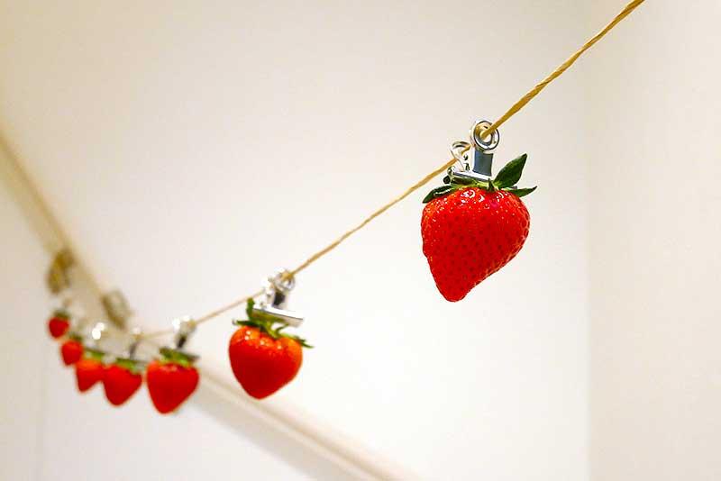 ロープと苺