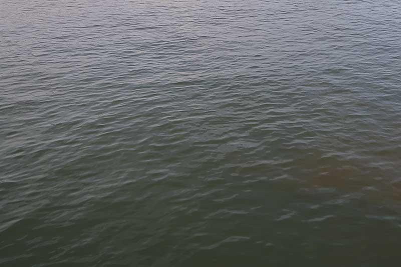 潮目の無い水面