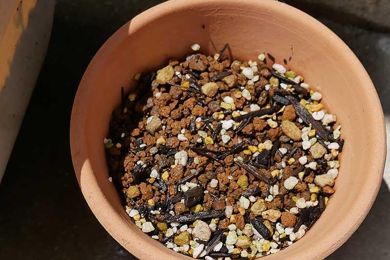 手作り植木鉢は芽も出て無い