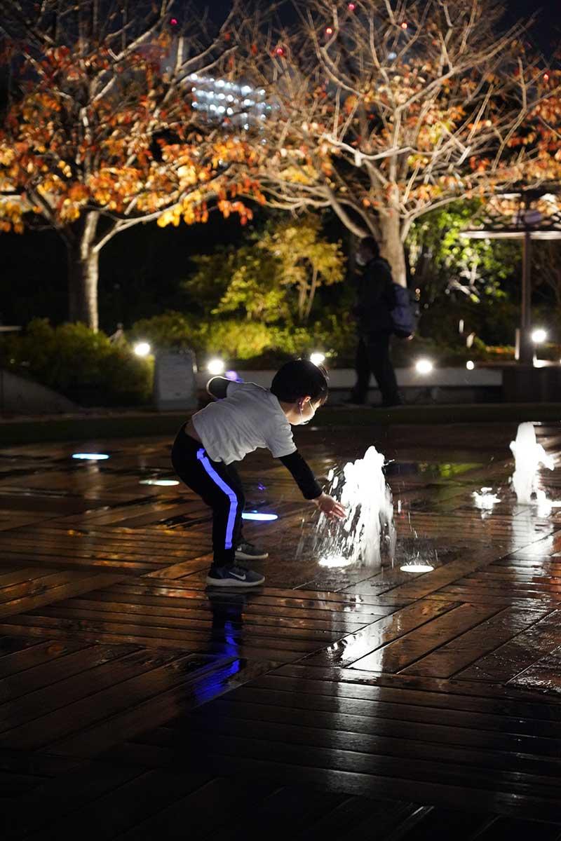 夜間・噴水と子供と紅葉