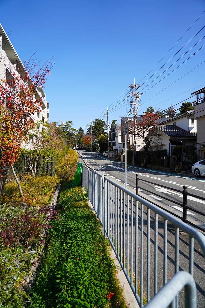 夙川学院のあった道