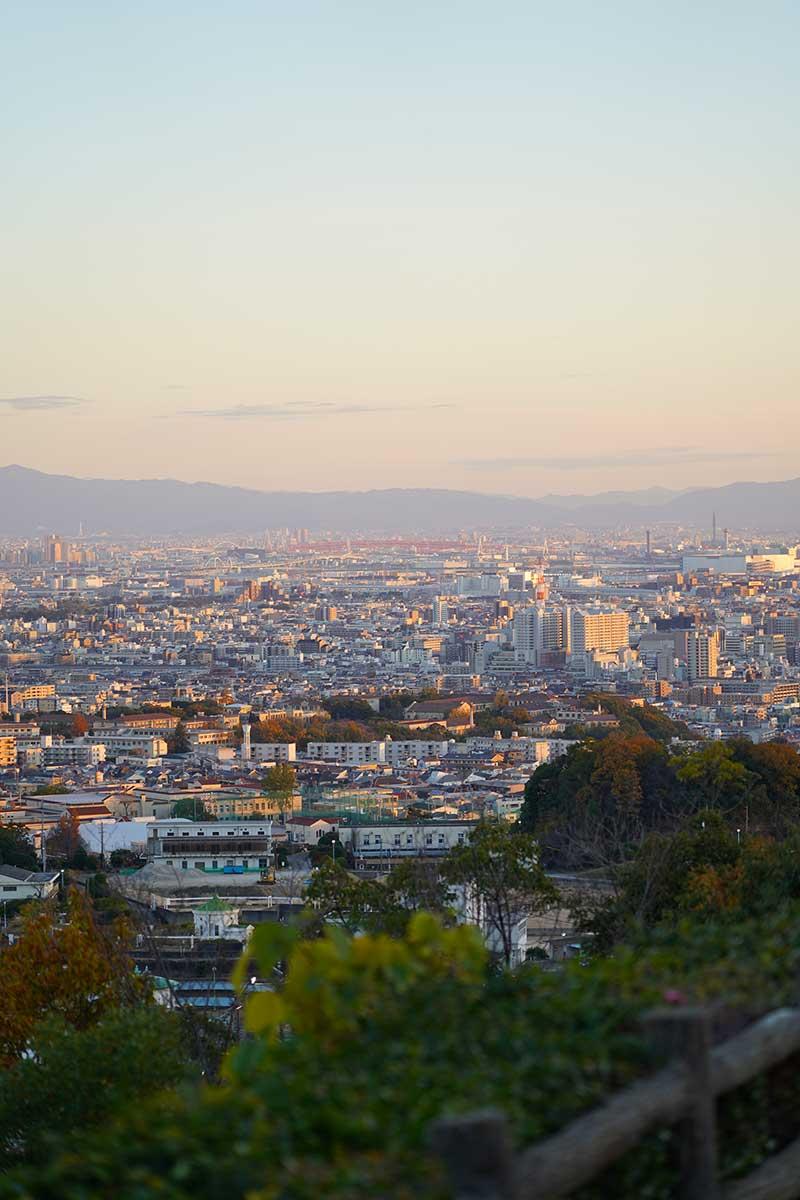 展望台から見える綺麗な街並み