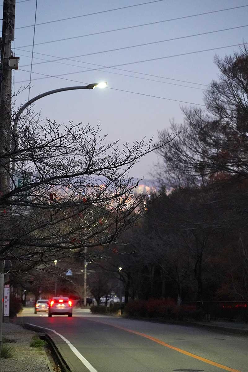 日が沈み夜景が見える甲山