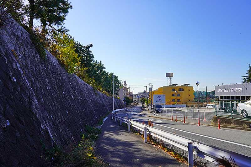 歩道橋までの道路(石垣のある歩道)