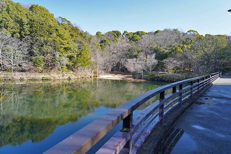 みくるま池に反射する木々