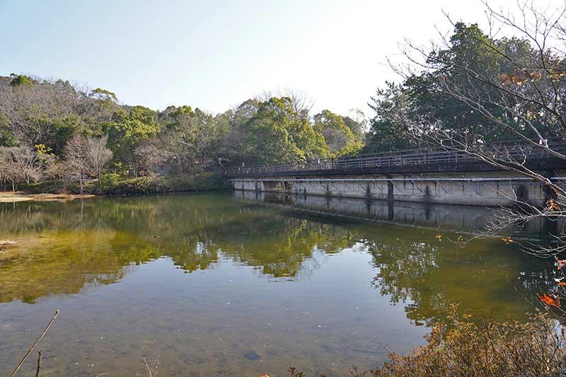 木々の映り込みが綺麗なみくるま池