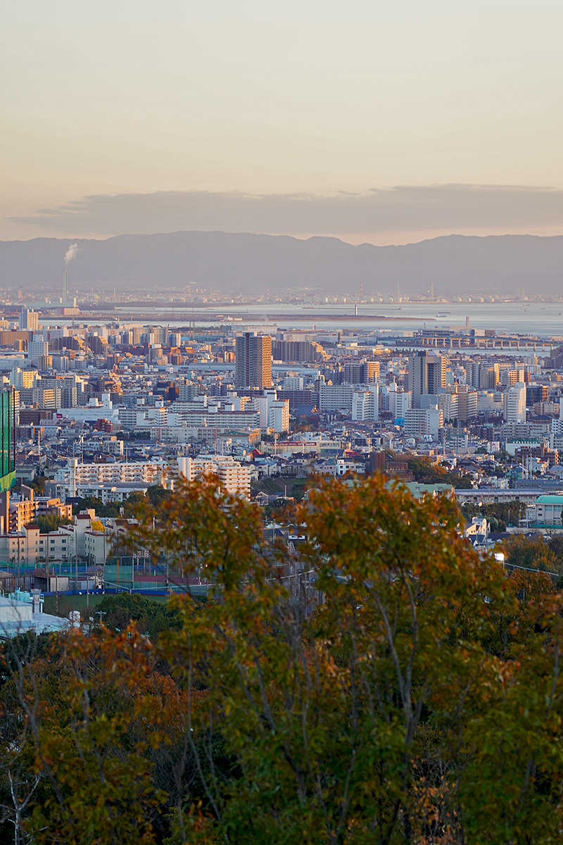 甲山森林公園の展望台からの眺望