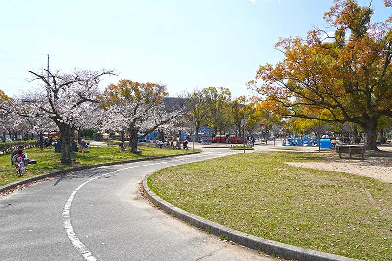 西武庫公園のお花見状況