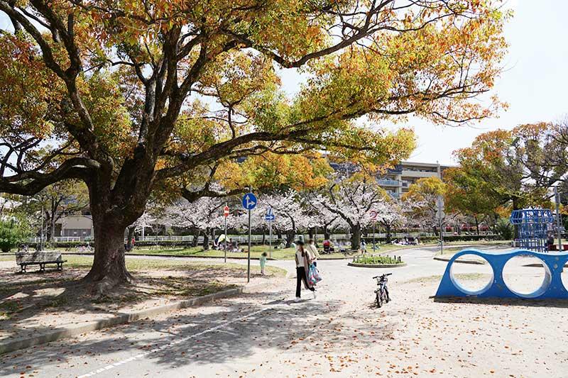西武庫公園・遊具とお花見