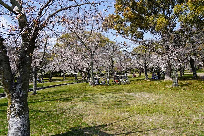 西武庫公園・芝生広場