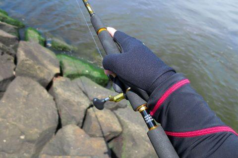 シーバス釣り・初夏(4~6月)デイゲームのメリットと注意点