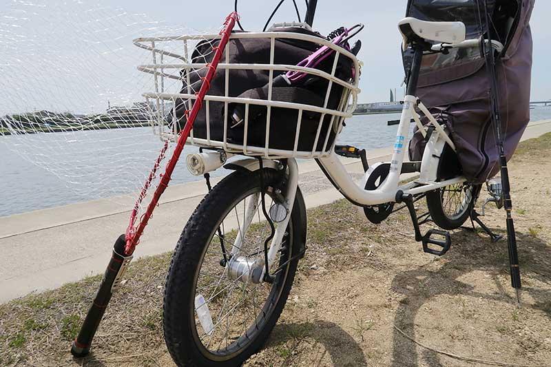 自転車とタモ