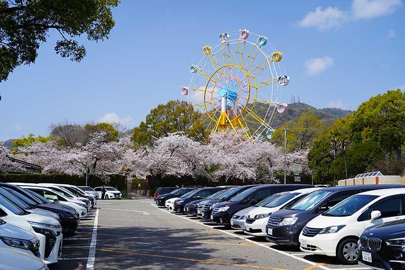 王子動物園の駐車場