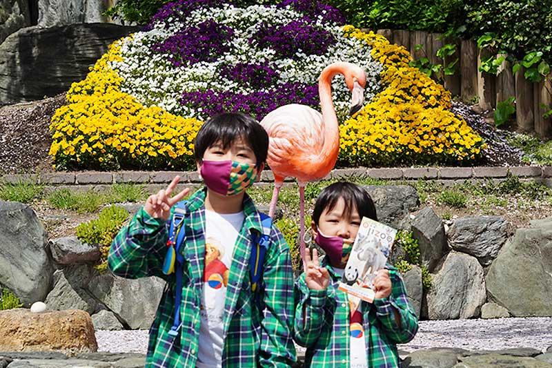 王子動物園の撮影スポット