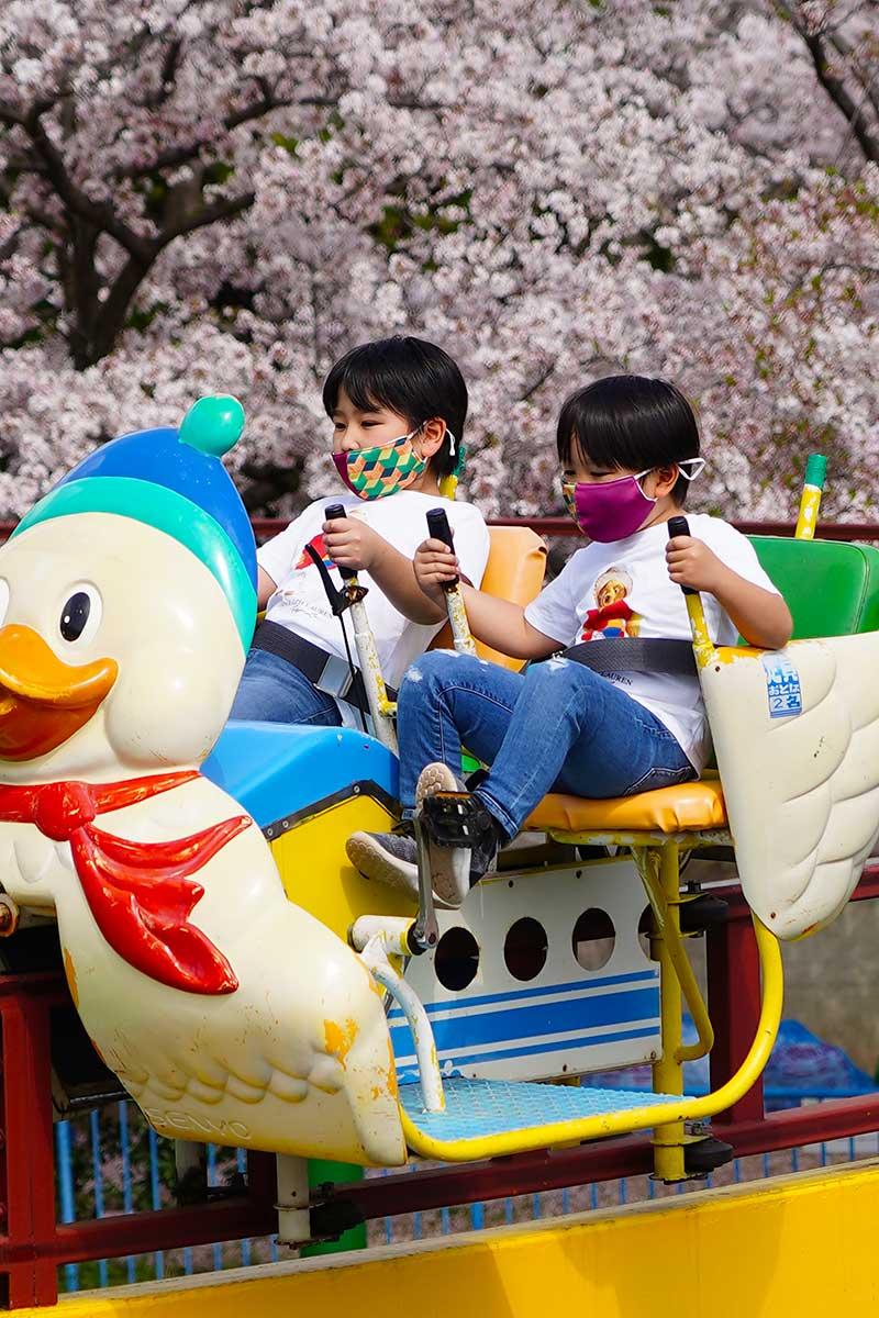サイクルモノレールと桜のコラボ