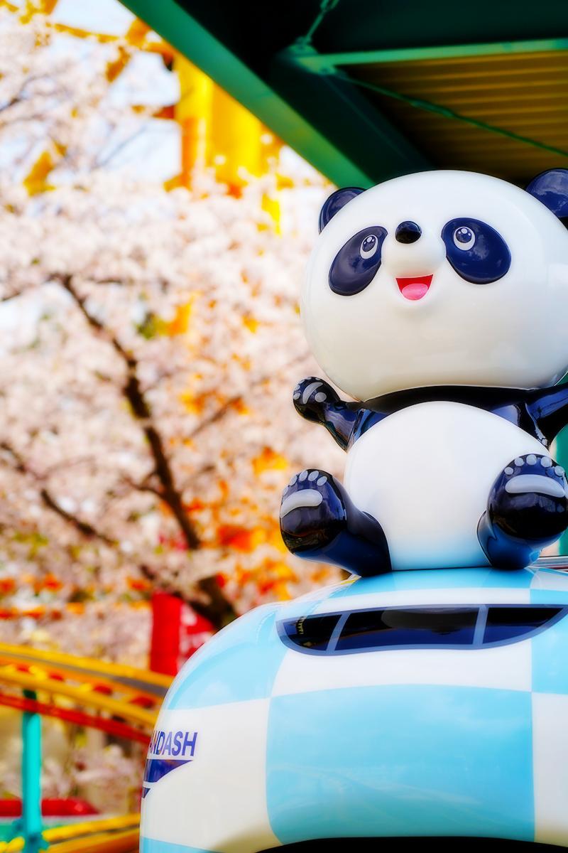 王子動物園・桜とジェットコースター