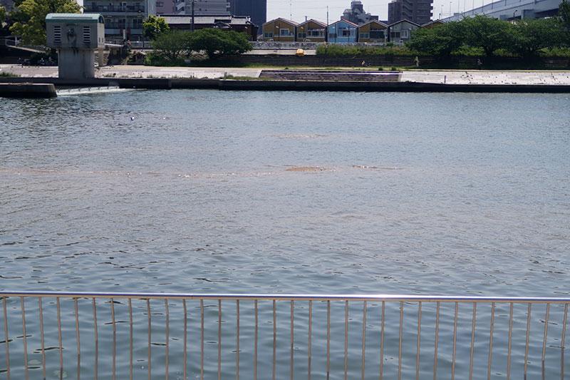 武庫川の底面