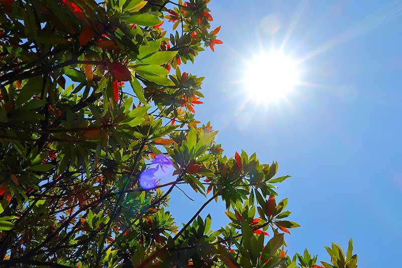 綺麗な青空と太陽